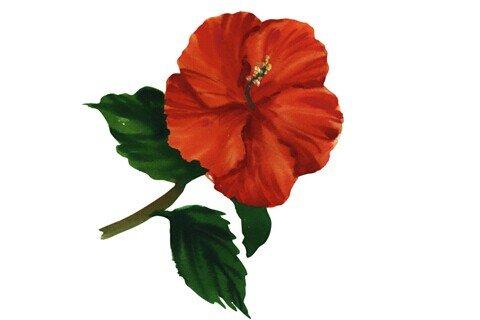 庄闲游戏红花