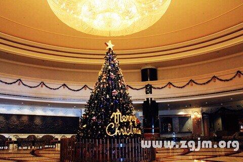 梦见圣诞树