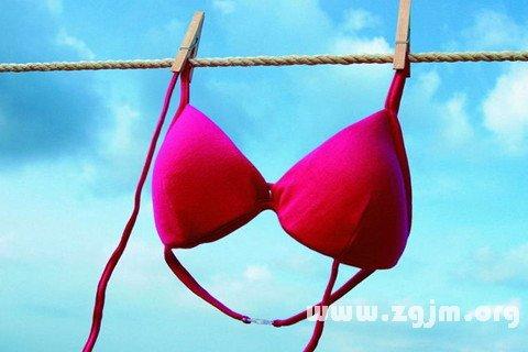 大奖娱乐平台胸罩