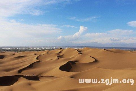 庄闲游戏沙漠