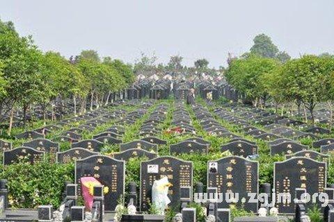 庄闲游戏公墓