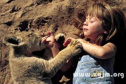 梦见动物说话