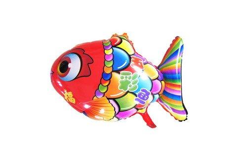梦见五彩鱼