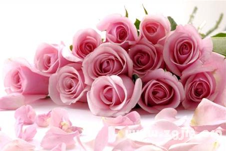 梦见男人送花
