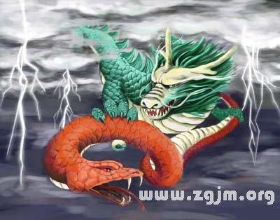 梦见与蛇大战