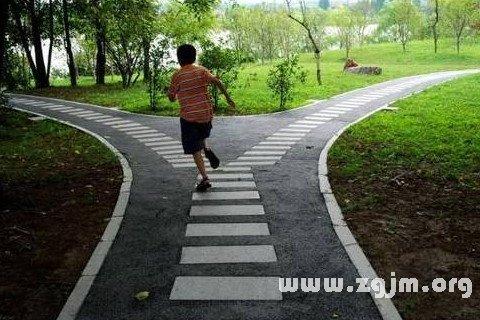 梦见两条道路