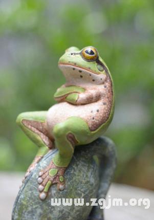 梦见杀青蛙