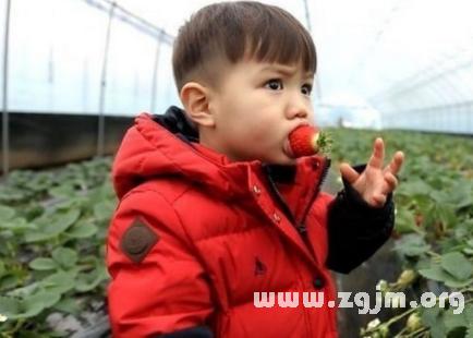 梦见吃草莓