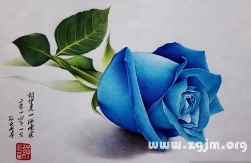 梦见蓝玫瑰