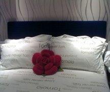 红色的枕头